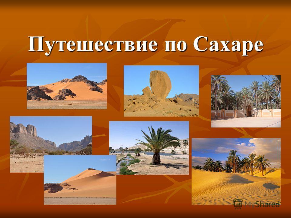 Путешествие по Сахаре