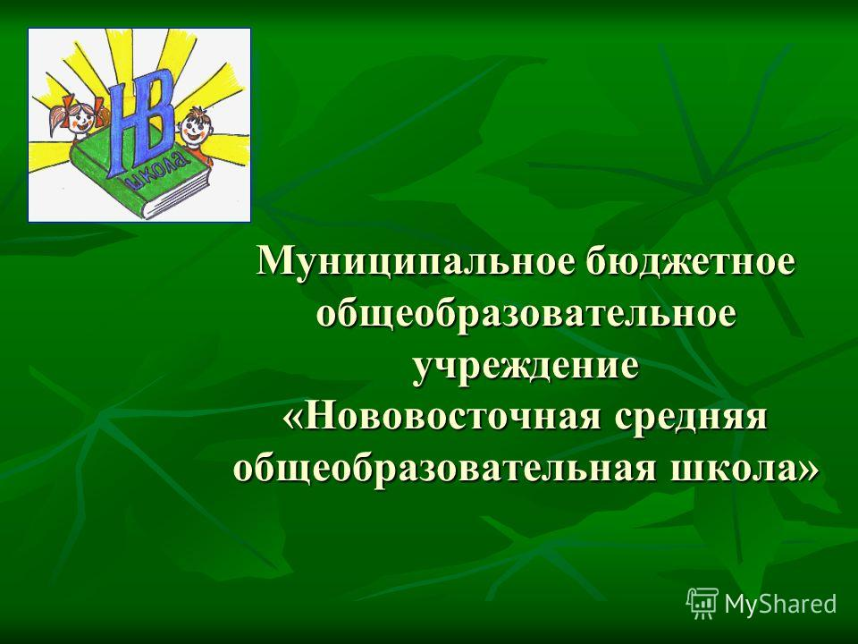 Муниципальное бюджетное общеобразовательное учреждение «Нововосточная средняя общеобразовательная школа»