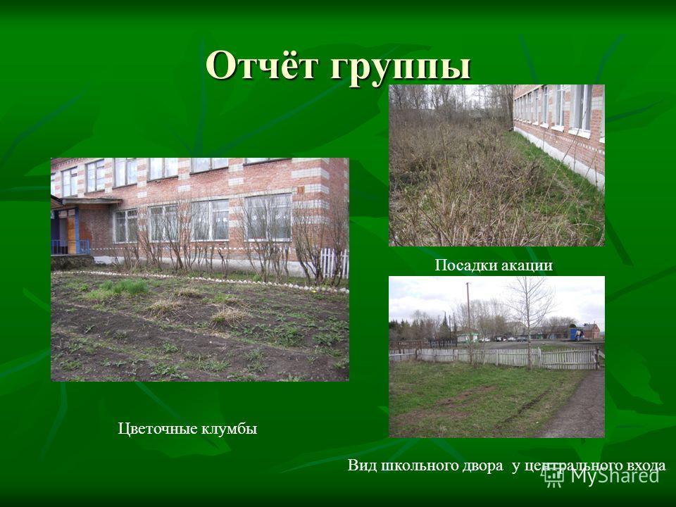 Отчёт группы Цветочные клумбы Посадки акации Вид школьного двора у центрального входа