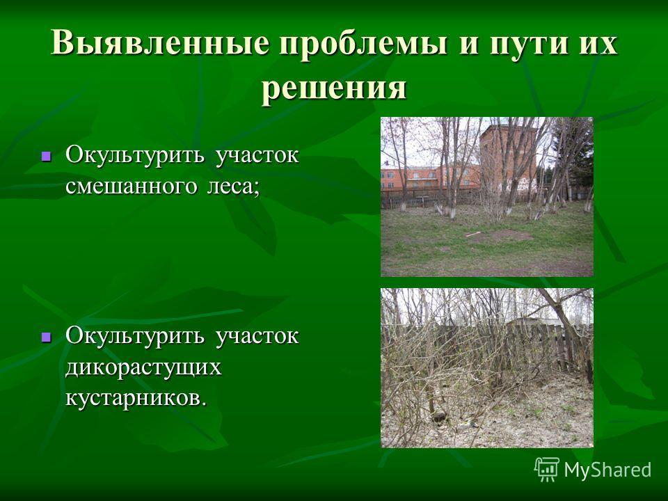 Выявленные проблемы и пути их решения Окультурить участок смешанного леса; Окультурить участок смешанного леса; Окультурить участок дикорастущих кустарников. Окультурить участок дикорастущих кустарников.
