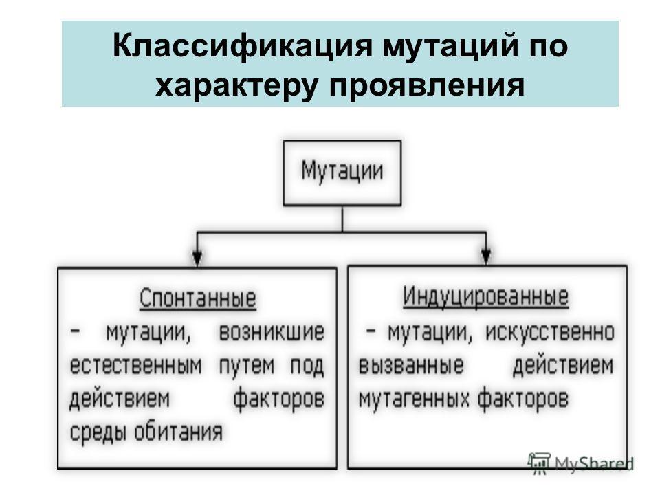 Классификация мутаций по характеру проявления