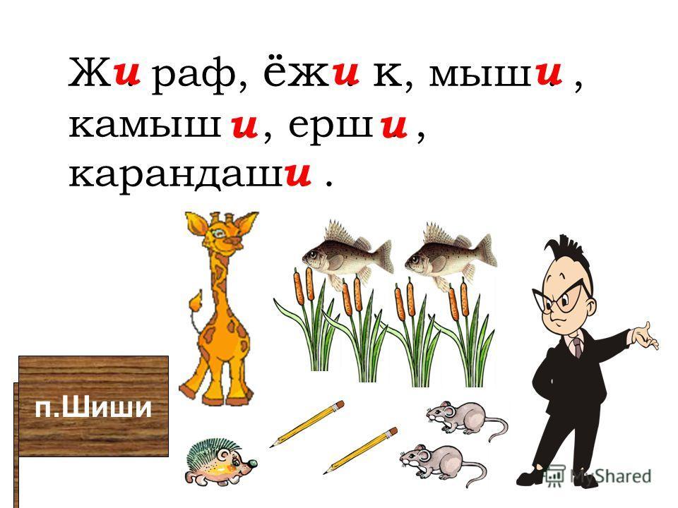 п.Шиши Ж. раф, ёж. к, мыш., камыш., ерш., карандаш.. иии ии и