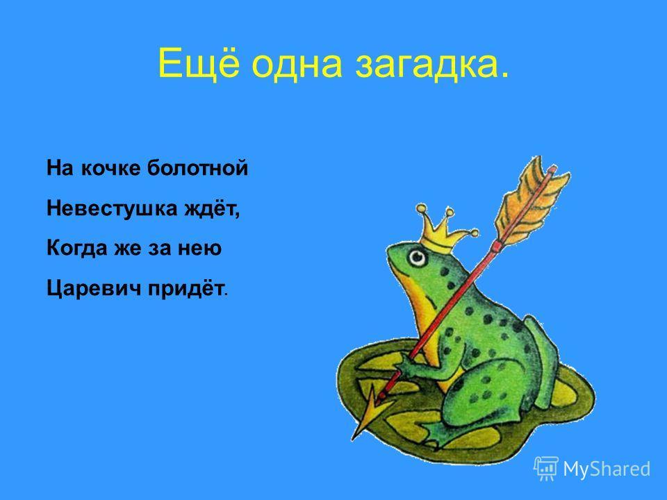 Ещё одна загадка. На кочке болотной Невестушка ждёт, Когда же за нею Царевич придёт.