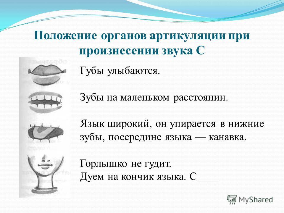 Положение органов артикуляции при произнесении звука С Губы улыбаются. Зубы на маленьком расстоянии. Язык широкий, он упирается в нижние зубы, посередине языка канавка. Горлышко не гудит. Дуем на кончик языка. С____
