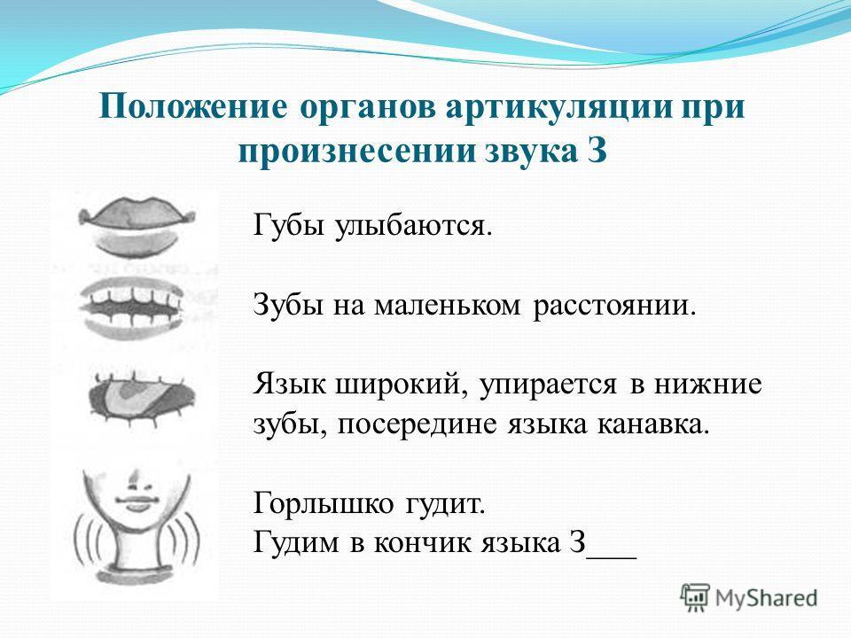 Положение органов артикуляции при произнесении звука З Губы улыбаются. Зубы на маленьком расстоянии. Язык широкий, упирается в нижние зубы, посередине языка канавка. Горлышко гудит. Гудим в кончик языка З___