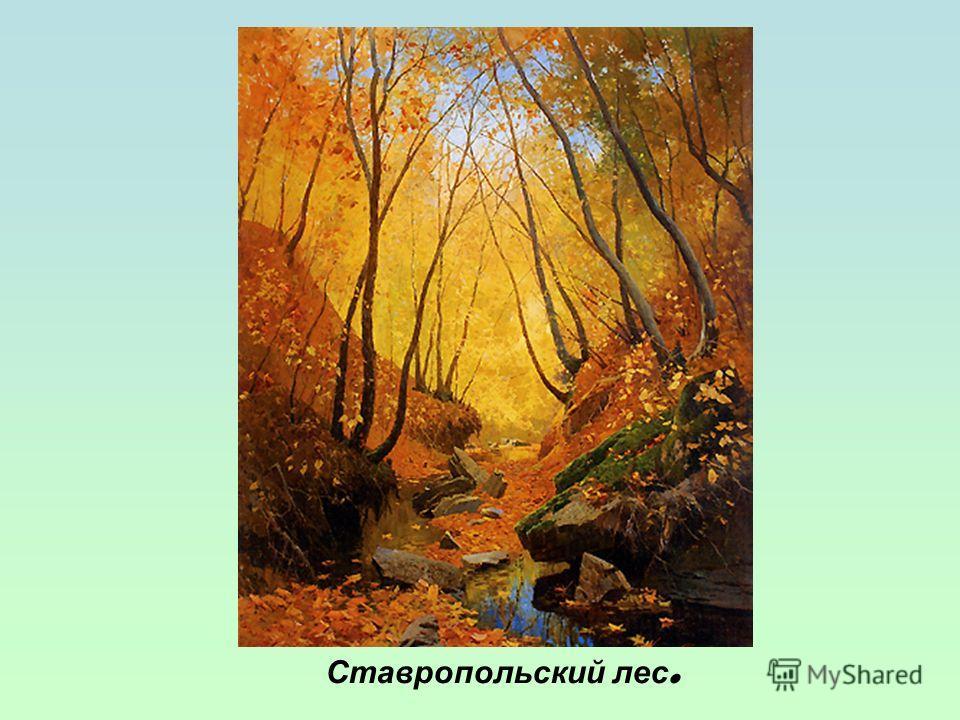 Ставропольский лес.