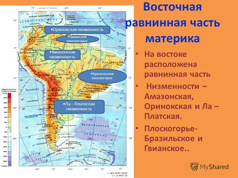 Восточная равнинная часть материка На востоке расположена равнинная часть Низменности – Амазонская, Оринокская и Ла – Платская. Плоскогорье- Бразильское и Гвианское.. Амазонская низменность Оринокская низменность Ла – Платкская низменность Бразильско
