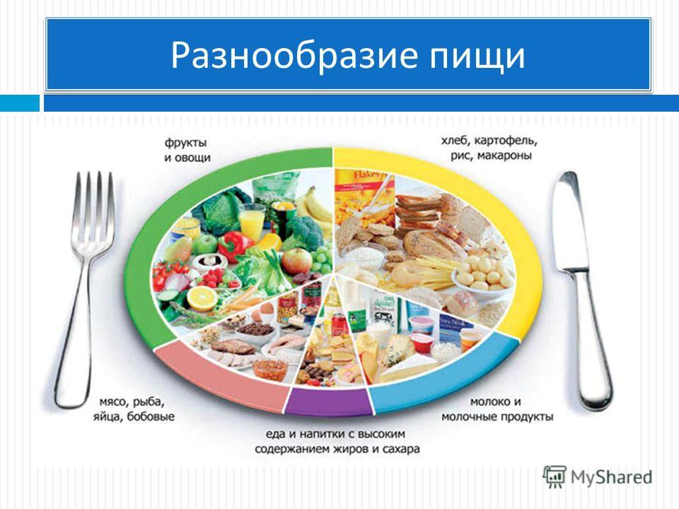 Разнообразие пищи