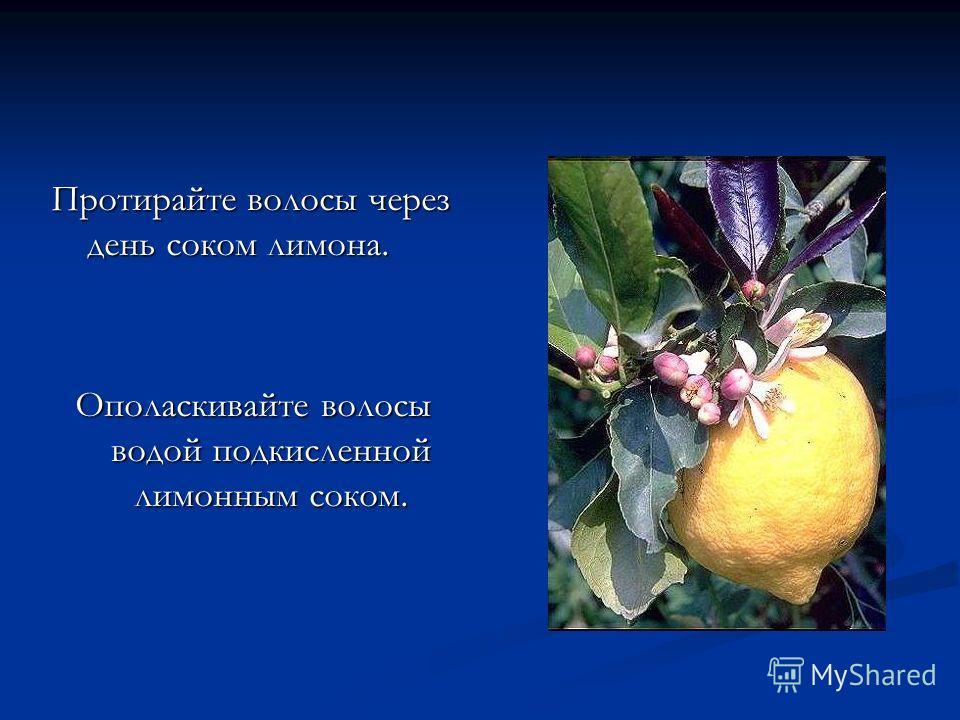 Протирайте волосы через день соком лимона. Ополаскивайте волосы водой подкисленной лимонным соком.
