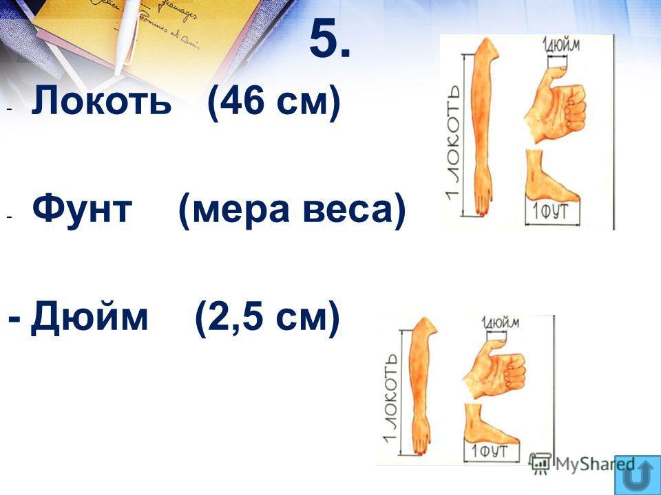 5. - Локоть (46 см) - Фунт (мера веса) - Дюйм (2,5 см)