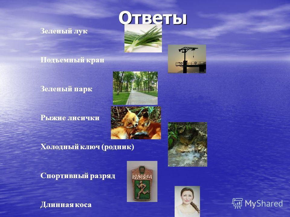 Ответы Зеленый лук Подъемный кран Зеленый парк Рыжие лисички Холодный ключ (родник) Спортивный разряд Длинная коса