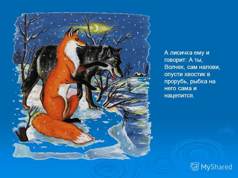 А лисичка ему и говорит: А ты, Волчек, сам налови, опусти хвостик в прорубь, рыбка на него сама и нацепится.