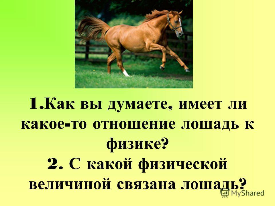 1. Как вы думаете, имеет ли какое - то отношение лошадь к физике ? 2. С какой физической величиной связана лошадь ?