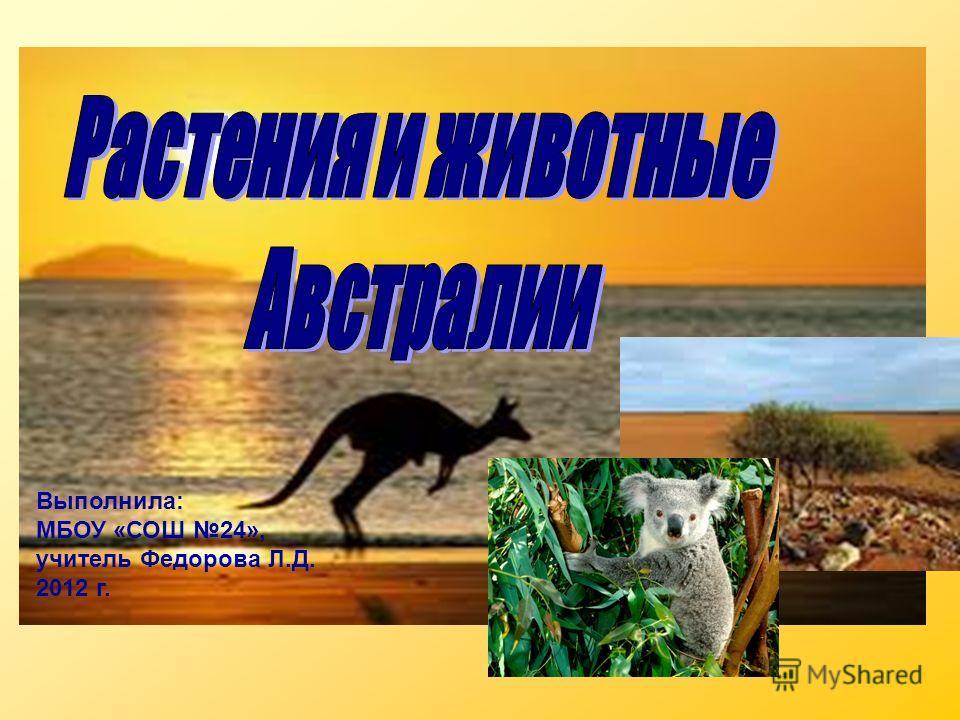 Выполнила: МБОУ «СОШ 24», учитель Федорова Л.Д. 2012 г.