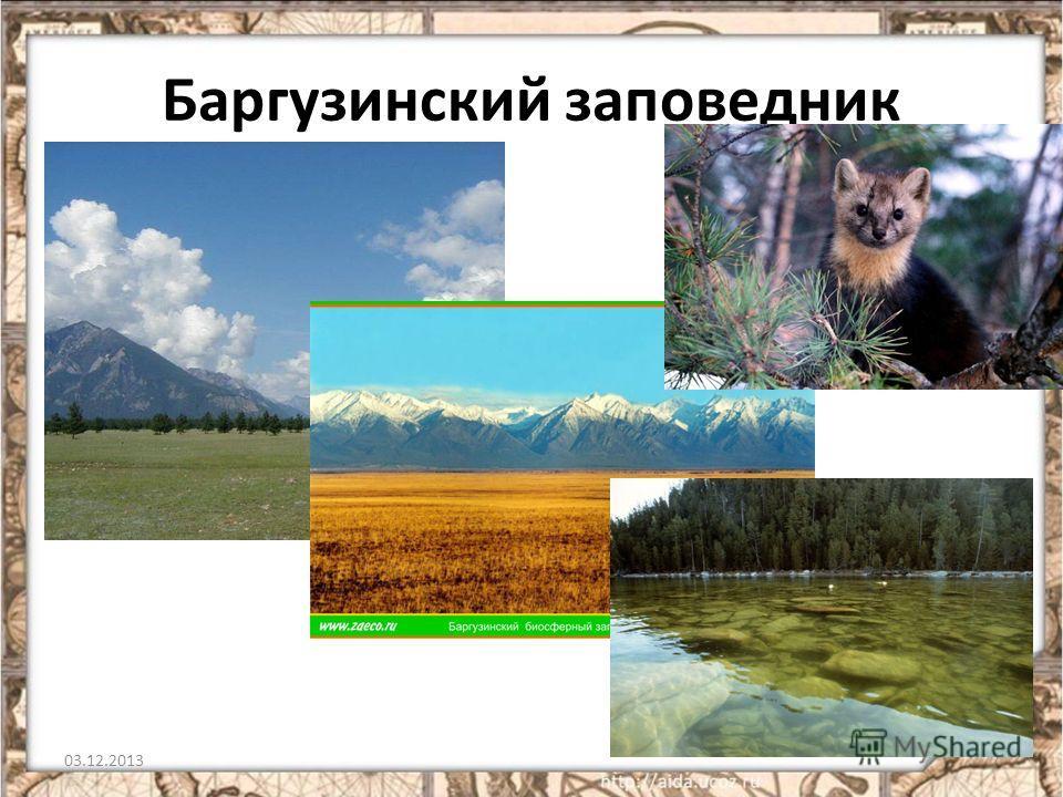 Баргузинский заповедник 03.12.20137