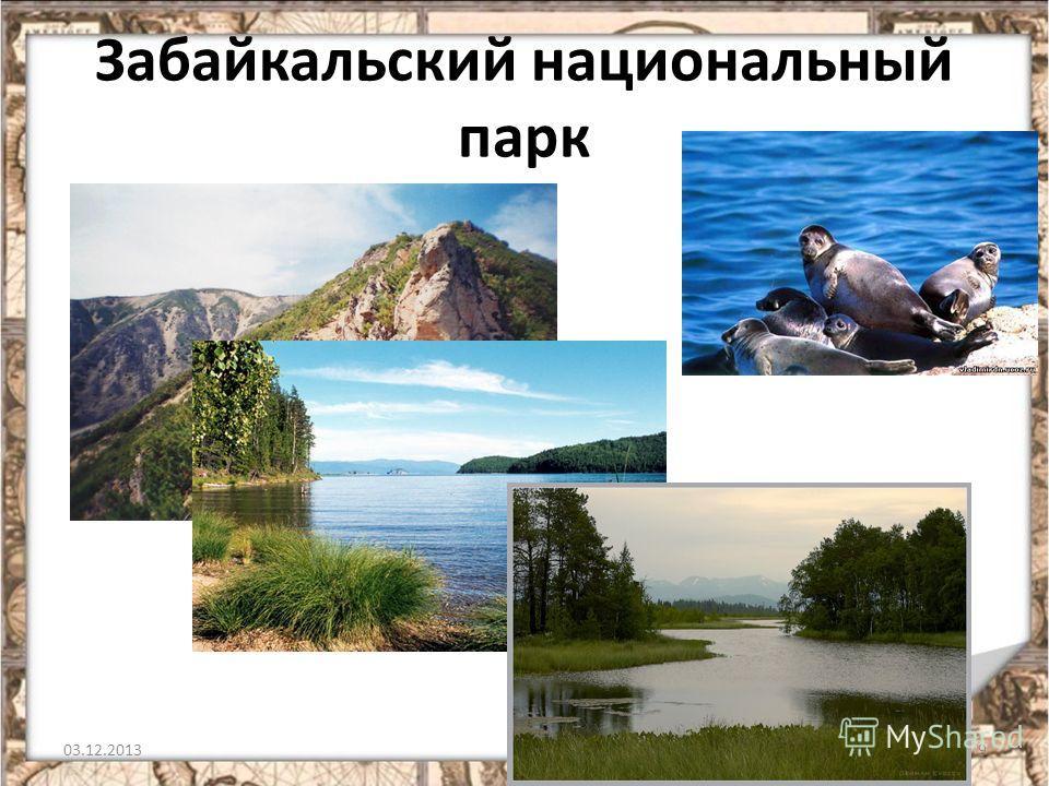 Забайкальский национальный парк 03.12.20139