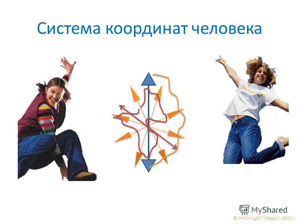 Система координат человека © ННОУ ЦДО Эйдос, 2011 г.