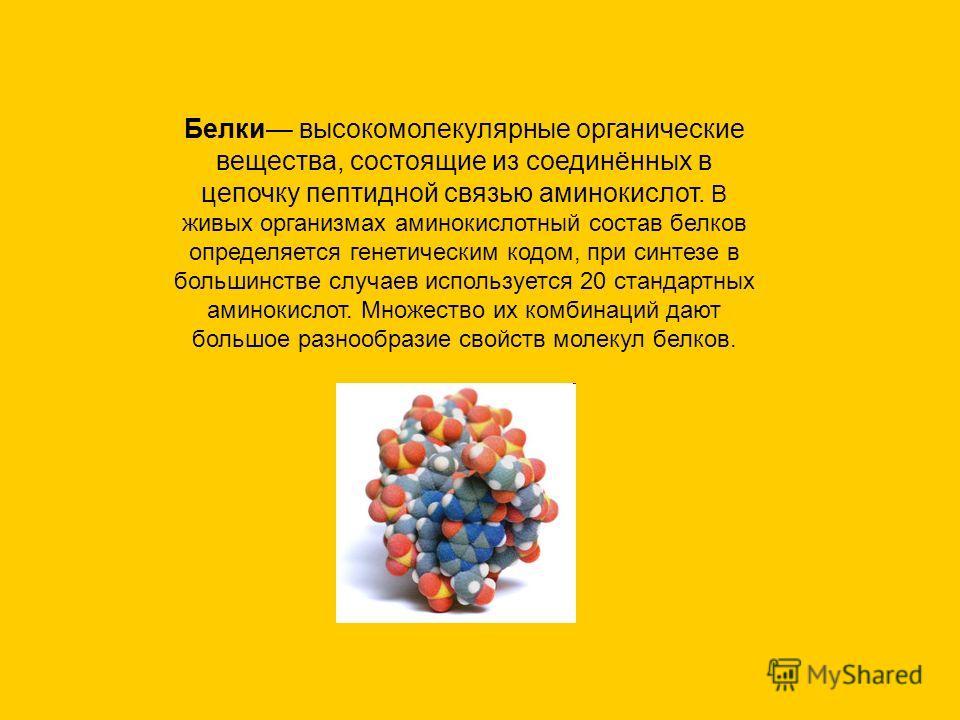 Белки высокомолекулярные органические вещества, состоящие из соединённых в цепочку пептидной связью аминокислот. В живых организмах аминокислотный состав белков определяется генетическим кодом, при синтезе в большинстве случаев используется 20 станда