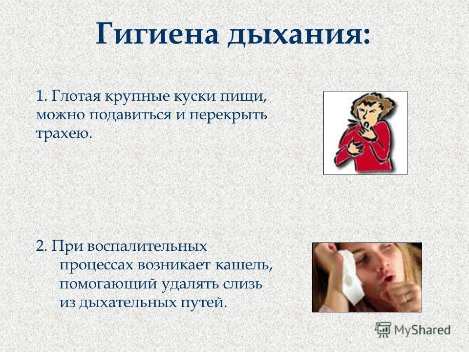 1. Глотая крупные куски пищи, можно подавиться и перекрыть трахею. 2. При воспалительных процессах возникает кашель, помогающий удалять слизь из дыхательных путей. Гигиена дыхания: