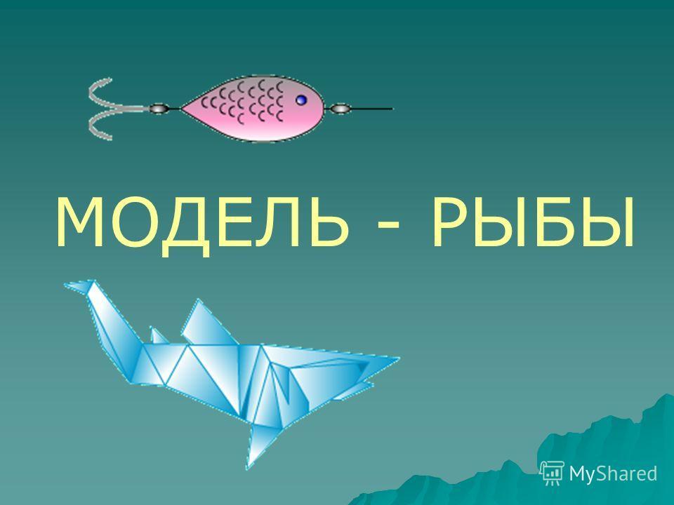 МОДЕЛЬ - РЫБЫ