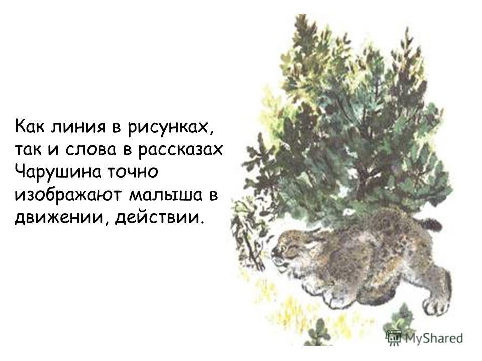 Как линия в рисунках, так и слова в рассказах Чарушина точно изображают малыша в движении, действии.