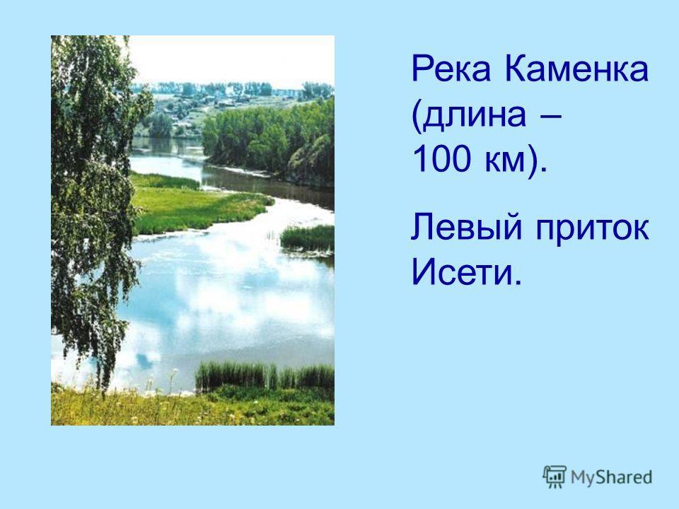 Река Каменка (длина – 100 км). Левый приток Исети.