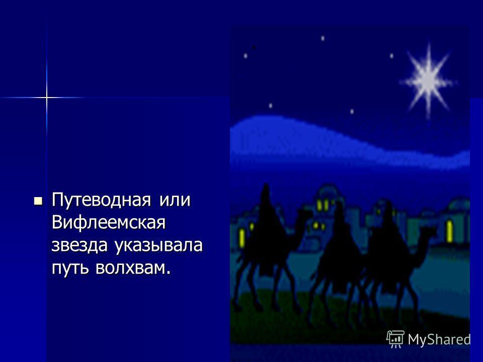 Путеводная или Вифлеемская звезда указывала путь волхвам. Путеводная или Вифлеемская звезда указывала путь волхвам.