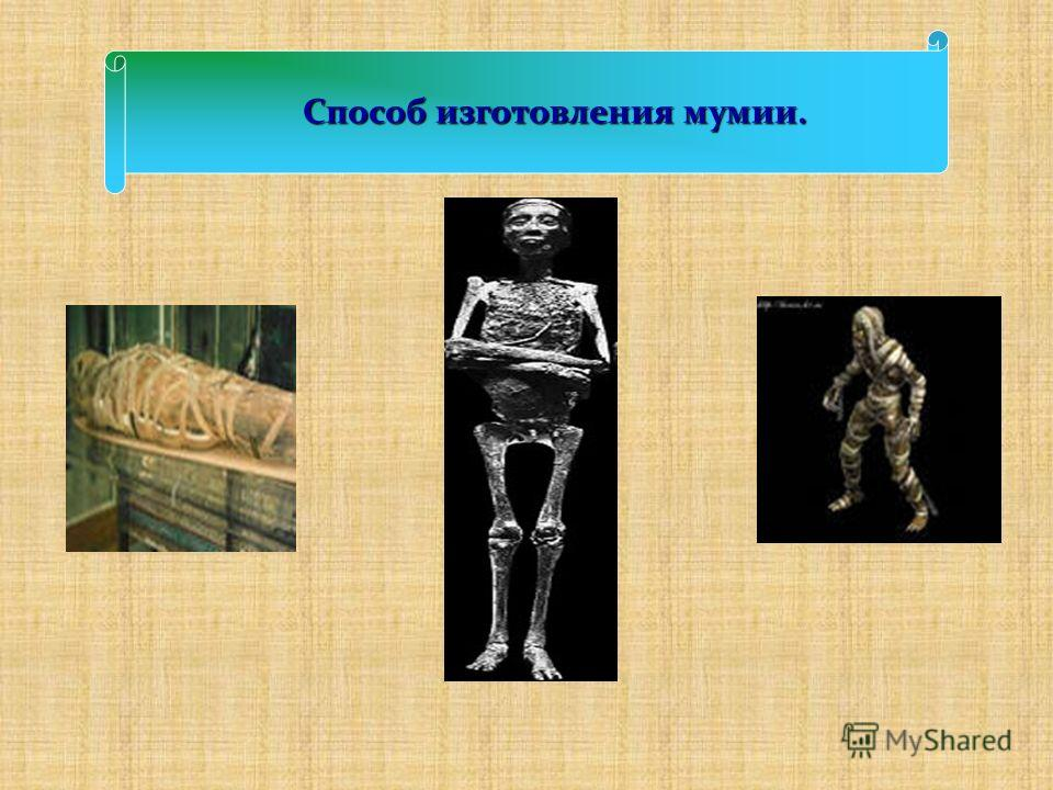 Способ изготовления мумии. Способ изготовления мумии.