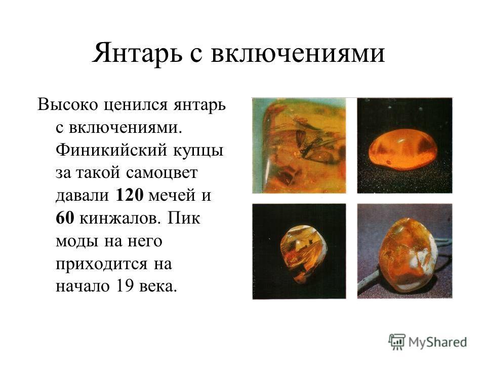 Янтарь с включениями Высоко ценился янтарь с включениями. Финикийский купцы за такой самоцвет давали 120 мечей и 60 кинжалов. Пик моды на него приходится на начало 19 века.