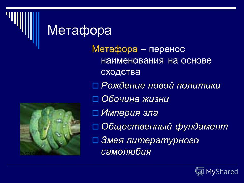 Метафора Метафора – перенос наименования на основе сходства Рождение новой политики Обочина жизни Империя зла Общественный фундамент Змея литературного самолюбия