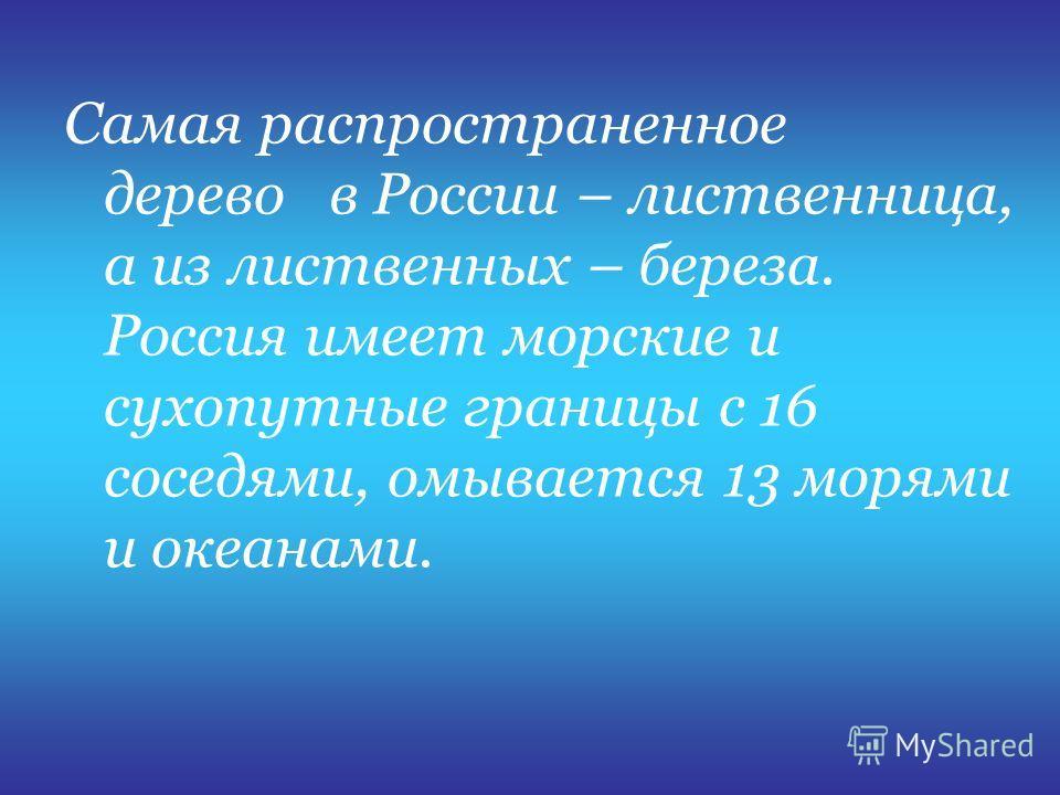 Самая распространенное дерево в России – лиственница, а из лиственных – береза. Россия имеет морские и сухопутные границы с 16 соседями, омывается 13 морями и океанами.