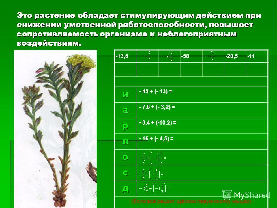 Это растение обладает стимулирующим действием при снижении умственной работоспособности, повышает сопротивляемость организма к неблагоприятным воздействиям. - -13,6-58-20,5-11и - 45 + (- 13) = а - 7,8 + (- 3,2) = р - 3,4 + (-10,2) = л - 16 + (- 4,5)