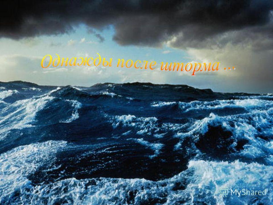 Пира́ты морские (или речные) разбойники. Слово «пират» (лат. pirata) происходит, в свою очередь, от греч. πειρατής, однокоренного со словом πειράω («пробовать, испытывать»). Таким образом, смысл слова будет «пытающий счастья». Слово вошло в обиход пр
