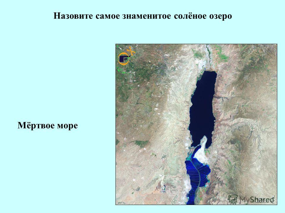 Назовите самое знаменитое солёное озеро Мёртвое море