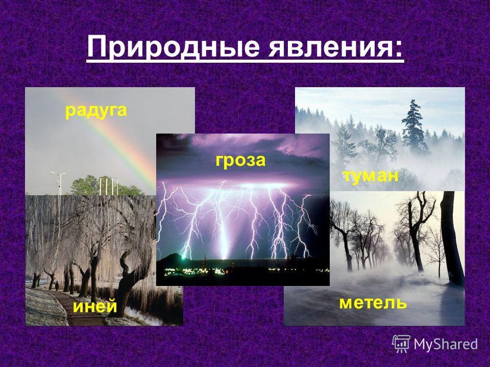 Природные явления: радуга туман метель гроза иней