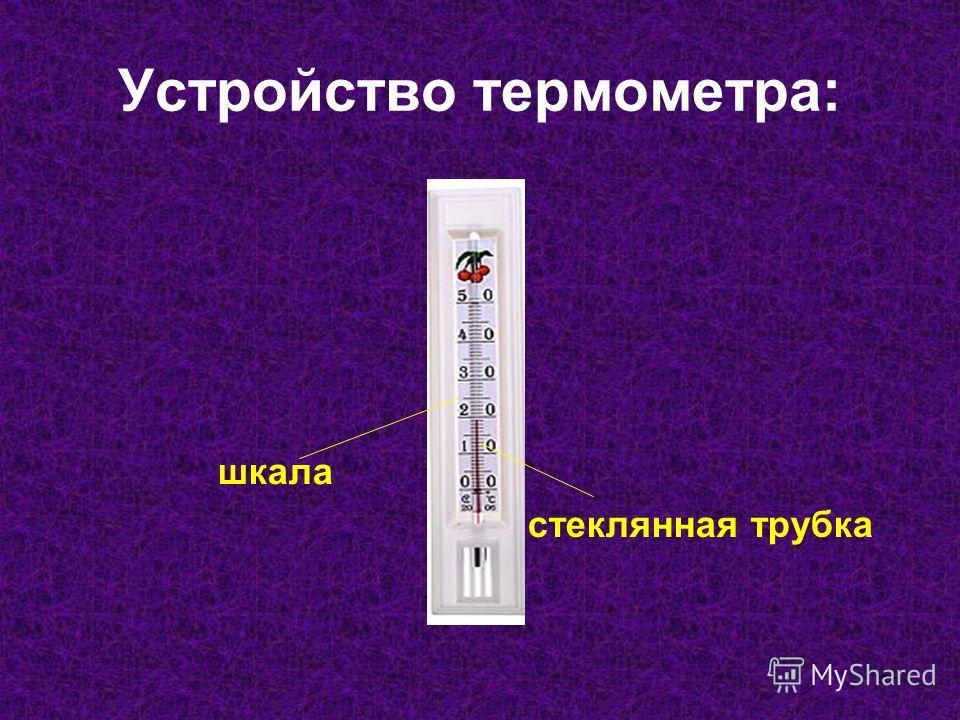 Устройство термометра: шкала стеклянная трубка
