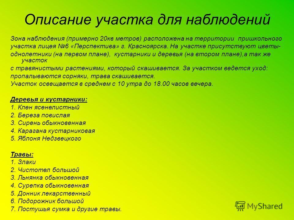 Зона наблюдения (примерно 20кв метров) расположена на территории пришкольного участка лицея 6 «Перспектива» г. Красноярска. На участке присутствуют цветы- однолетники (на первом плане), кустарники и деревья (на втором плане),а так же участок с травян