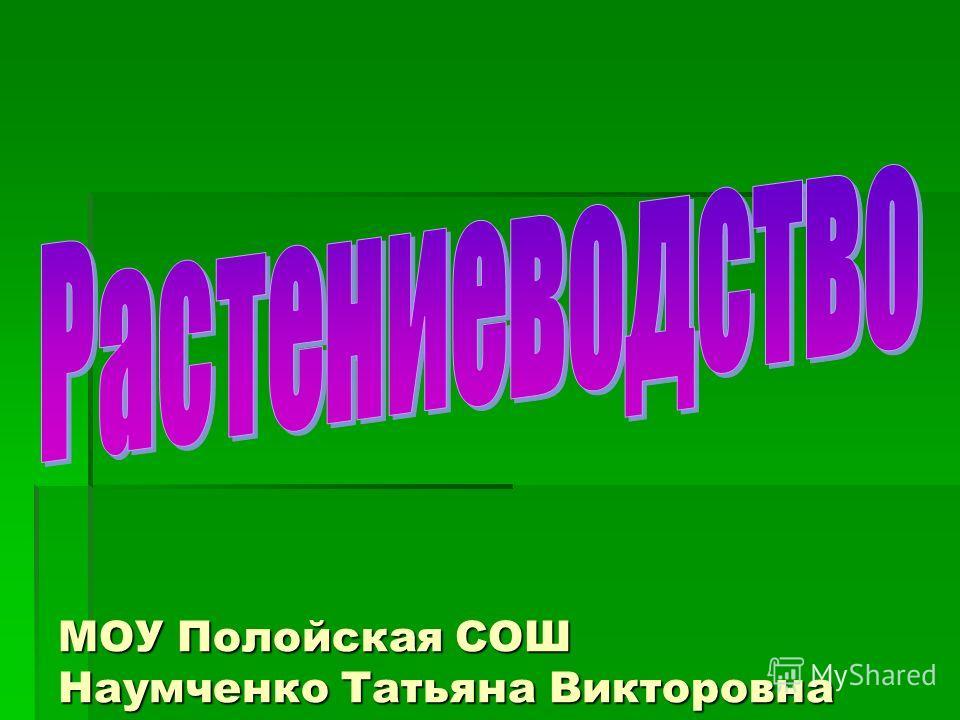 МОУ Полойская СОШ Наумченко Татьяна Викторовна