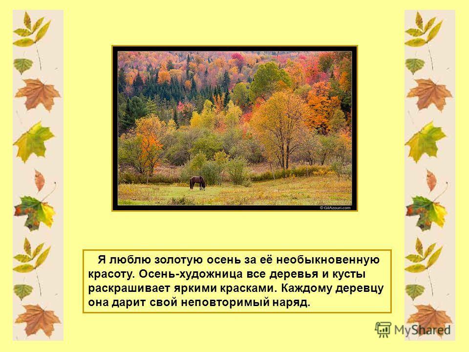 Я люблю золотую осень за её необыкновенную красоту. Осень-художница все деревья и кусты раскрашивает яркими красками. Каждому деревцу она дарит свой неповторимый наряд.