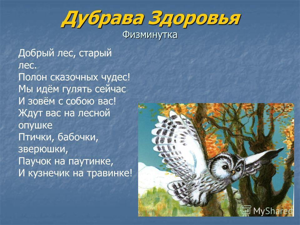 Дубрава Здоровья Физминутка Добрый лес, старый лес. Полон сказочных чудес! Мы идём гулять сейчас И зовём с собою вас! Ждут вас на лесной опушке Птички, бабочки, зверюшки, Паучок на паутинке, И кузнечик на травинке!