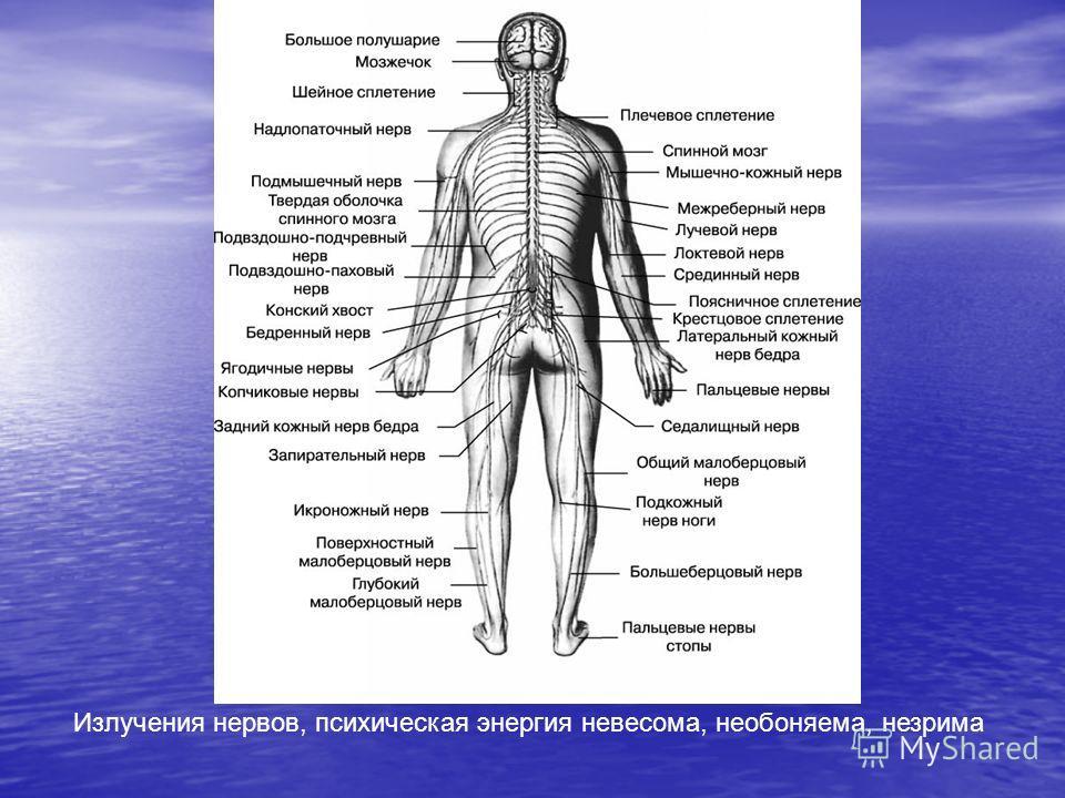 Излучения нервов, психическая энергия невесома, необоняема, незрима