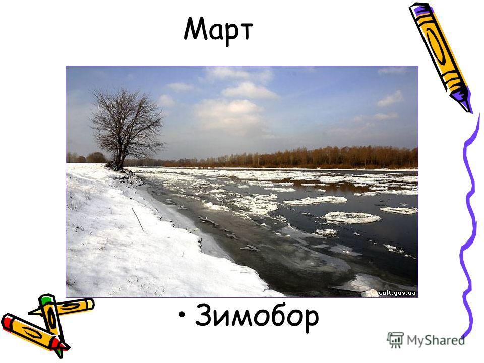Март Зимобор