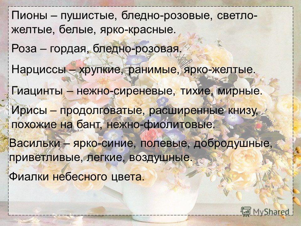 Пионы – пушистые, бледно-розовые, светло- желтые, белые, ярко-красные. Роза – гордая, бледно-розовая. Нарциссы – хрупкие, ранимые, ярко-желтые. Гиацинты – нежно-сиреневые, тихие, мирные. Ирисы – продолговатые, расширенные книзу, похожие на бант, нежн