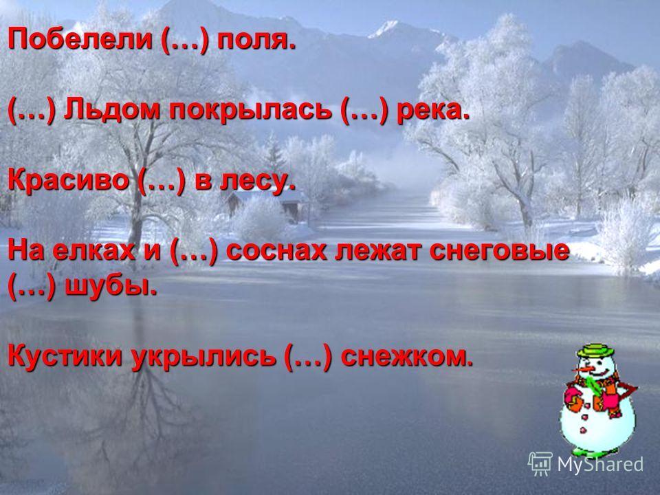 Побелели (…) поля. (…) Льдом покрылась (…) река. Красиво (…) в лесу. На елках и (…) соснах лежат снеговые (…) шубы. Кустики укрылись (…) снежком.