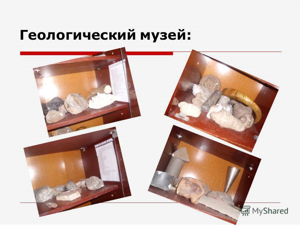 Геологический музей: