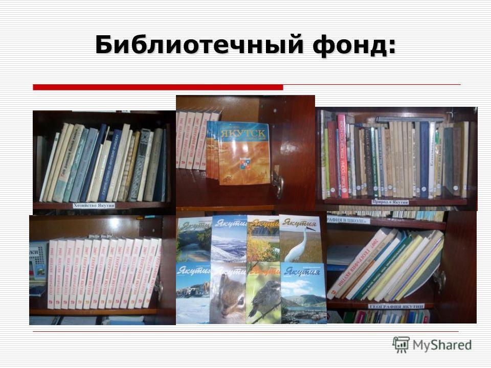 Библиотечный фонд: