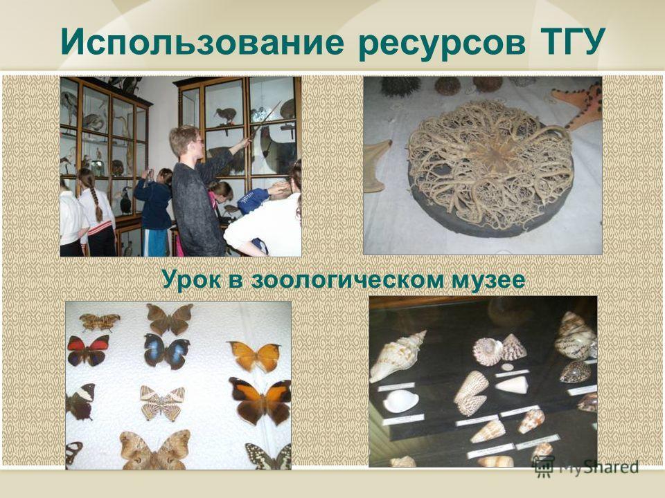 Использование ресурсов ТГУ Урок в зоологическом музее