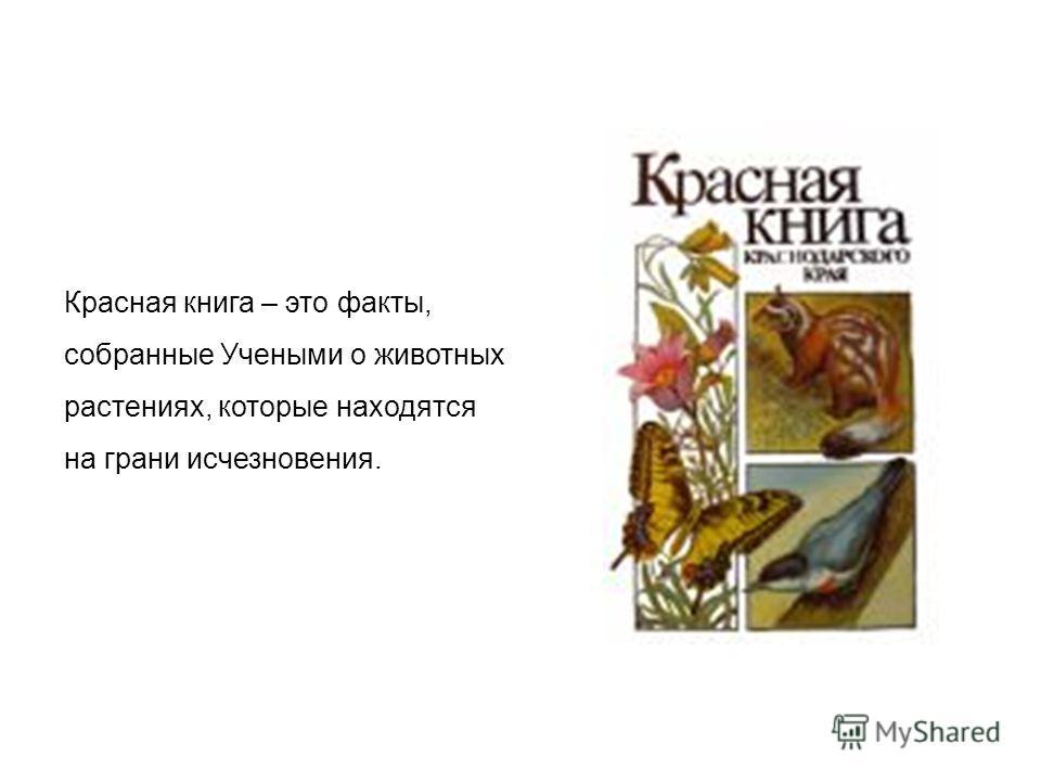 Красная книга – это факты, собранные Учеными о животных растениях, которые находятся на грани исчезновения.