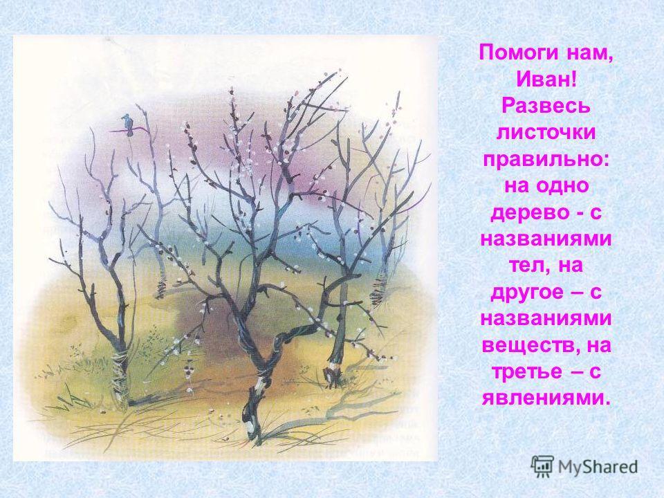 Помоги нам, Иван! Развесь листочки правильно: на одно дерево - с названиями тел, на другое – с названиями веществ, на третье – с явлениями.