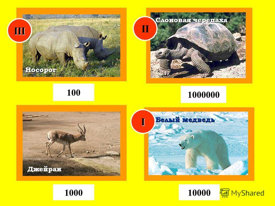 Джейран Носорог 100 100010000 1000000 Слоновая черепаха Белый медведь I II III